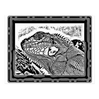 Iguana black/white postal