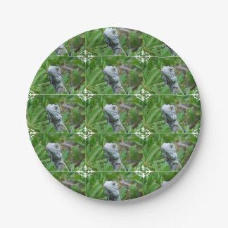 Iguana del peekaboo plato de papel