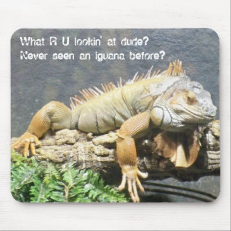 Iguana fresca alfombrilla de ratón