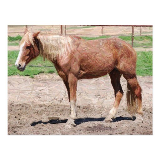 ilustraciones adultas del lápiz del caballo postal