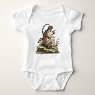 Ilustraciones del Lemur Body Para Bebé