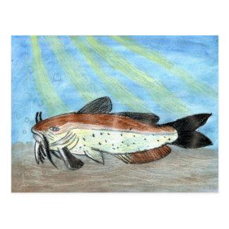 Ilustraciones que ganan de S. Carretero, grado 6 Postal
