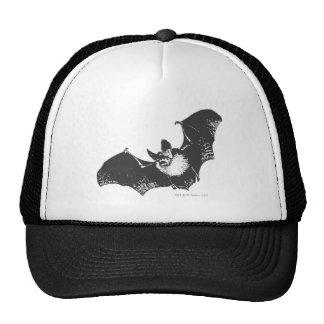 Imagen 22 de Batman Gorros