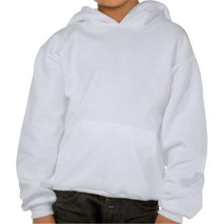 Imagen de la sudadera con capucha de un niño