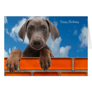 Imagen del mascota para la tarjeta de felicitación