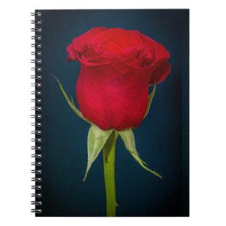 Imagen del rosa rojo libro de apuntes