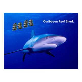 Imagen del tiburón para la postal