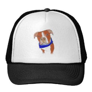 imagen gorras de camionero