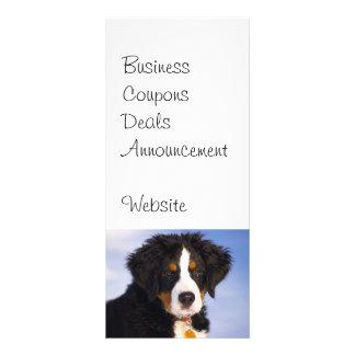 Imagen linda del perrito del perro de montaña de tarjeta publicitaria a todo color