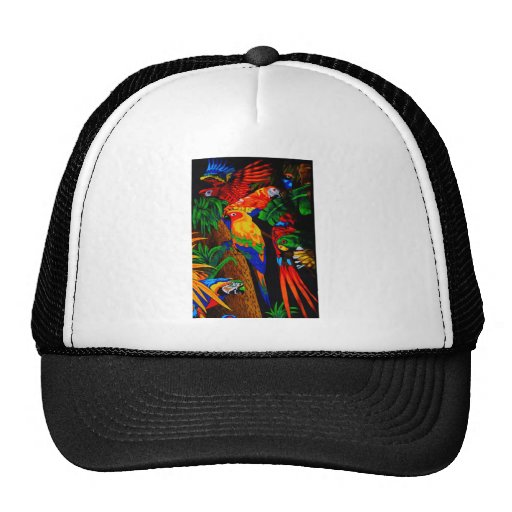 Imagen multicolora del loro gorra