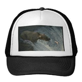 Imagen-Pesca del oso grizzly para los salmones Gorro