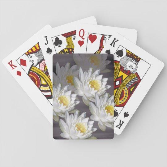 Imagen salvaje blanca del lirio de agua de los barajas de cartas