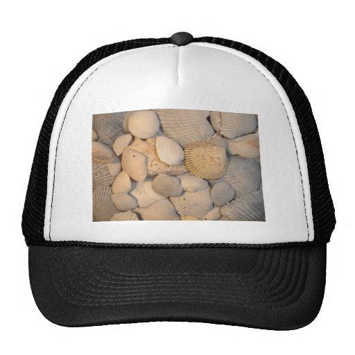 imágenes del reemplazo gorra