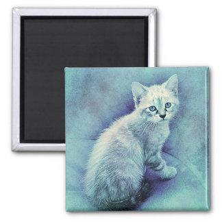 Imán Acuarela azul del extracto el | del gatito el |