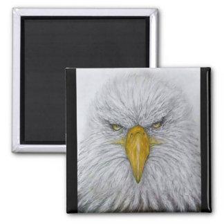 Imán águila, águila calva, águila con la bandera