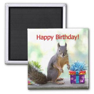 Imán Ardilla del feliz cumpleaños