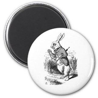 Imán blanco del conejo (gestión de tiempo)