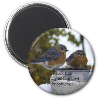 Imán Bluebird de la felicidad cómico