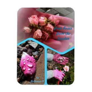 Imán Brotes color de rosa rosados