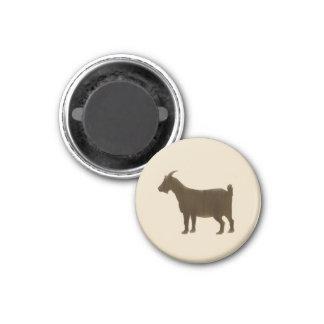 Imán Brown pintó la cabra de la granja