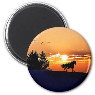 Imán caballo corriente - caballo de la puesta del sol -