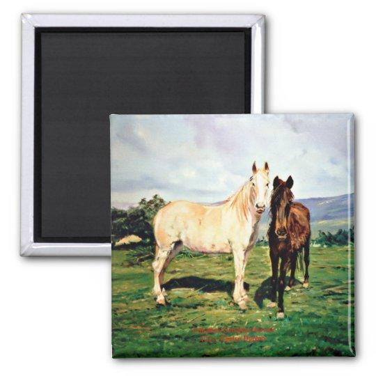 Imán Caballos/Cabalos/Horses