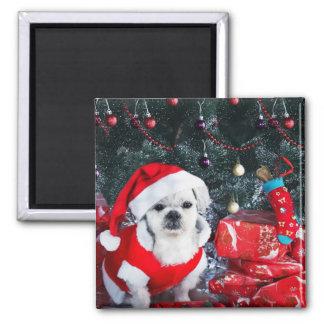Imán Caniche santa - perro del navidad - perro de Papá