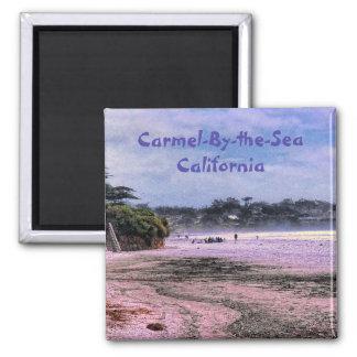 Imán central de la costa de California de la playa