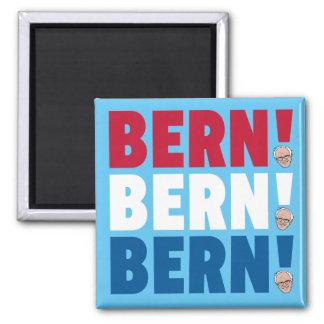 Imán Chorreadoras de Berna Berna Berna Bernie