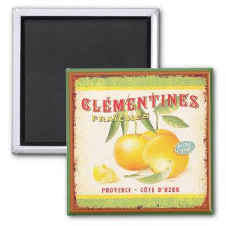 Imán Clementinas de Provence