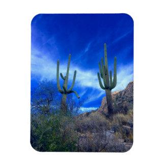 Imán colorido de Arizona del desierto del sudoeste