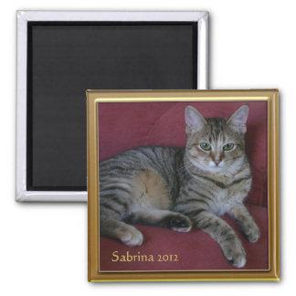 Imán conmemorativo del marco de la foto del gato