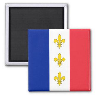 Imán de Francia - tricolor y flores de lis