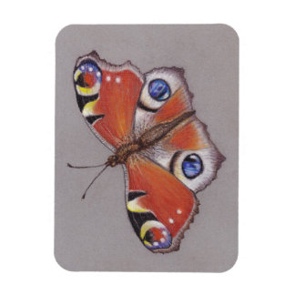 Imán de la foto/mariposa de pavo real