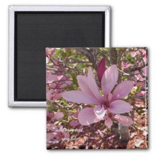 Imán de las magnolias