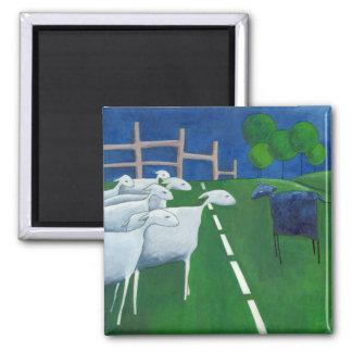Imán de las ovejas negras