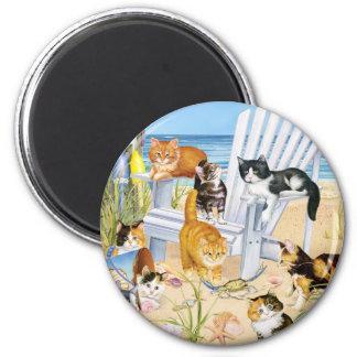 Imán de los gatitos del vago de la playa
