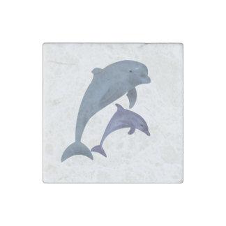 Imán De Piedra Dos delfínes tropicales que saltan al lado de uno