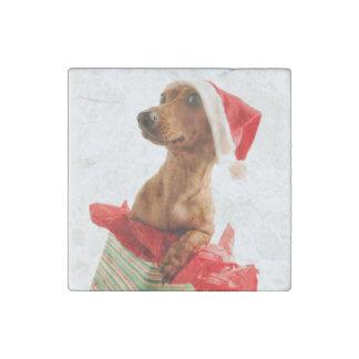 Imán De Piedra El Dachshund santa - el perro de santa - persiguen