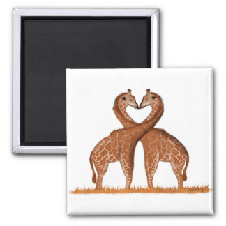 Imán del corazón del amor de las jirafas