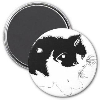 Imán del gatito