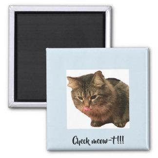 Imán del gato