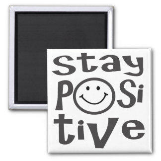 Imán del positivo de la estancia