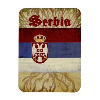 Imán del recuerdo de Serbia