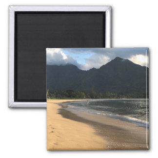 Imán del refrigerador de la playa del Co. Hanalei