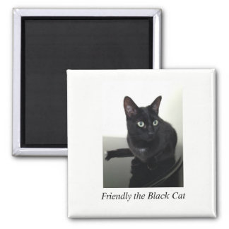 Imán del refrigerador del gato negro - cuadrado