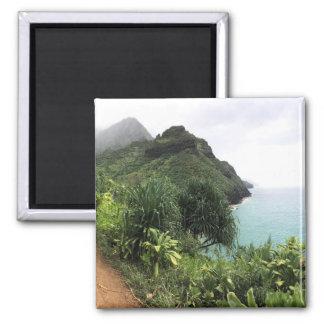 Imán del refrigerador del rastro de Kauai Kalalau