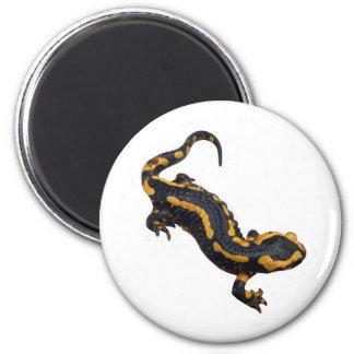 Imán del Salamander de fuego