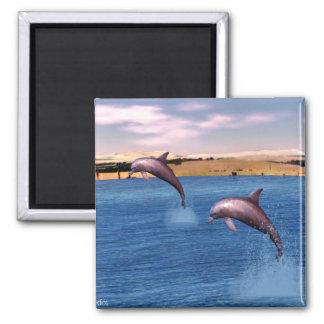 Imán Delfínes