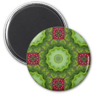 Imán Diseño caleidoscópico de la mandala de la baya del
